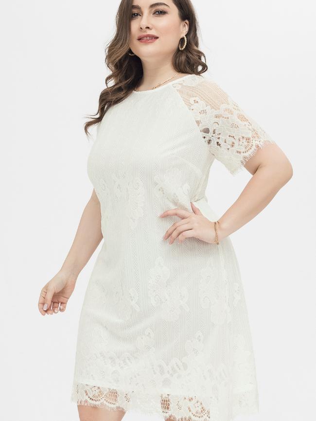 Lace Sweet Dress