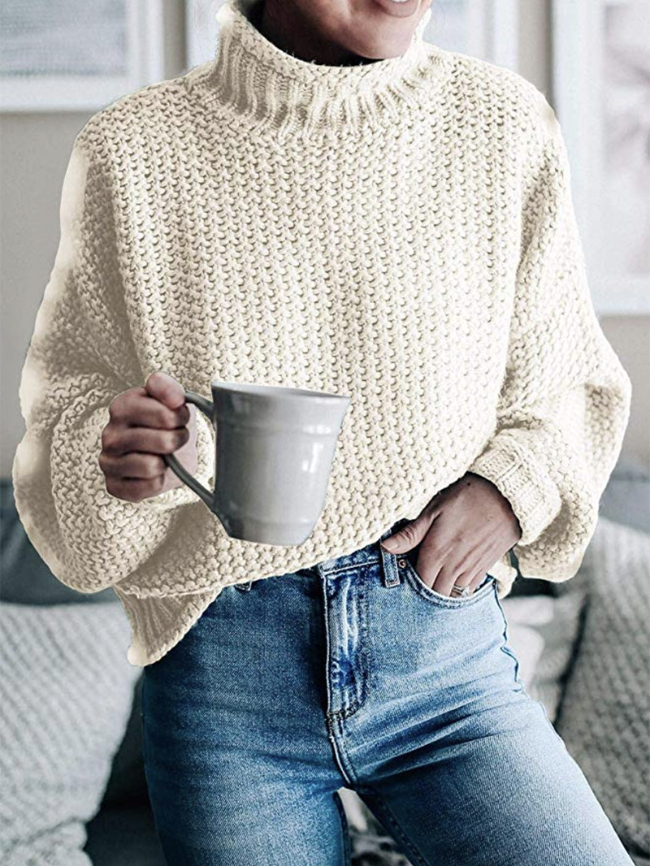 Multicolor Batwing Sleeve Chunky Turtleneck Sweater