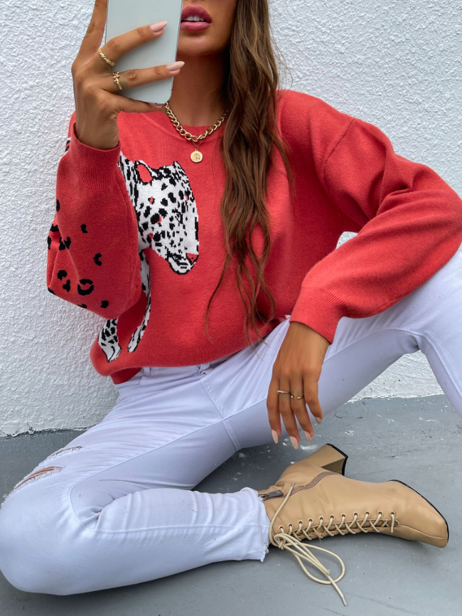 Leopard Printed Pullover Knitted Sweater